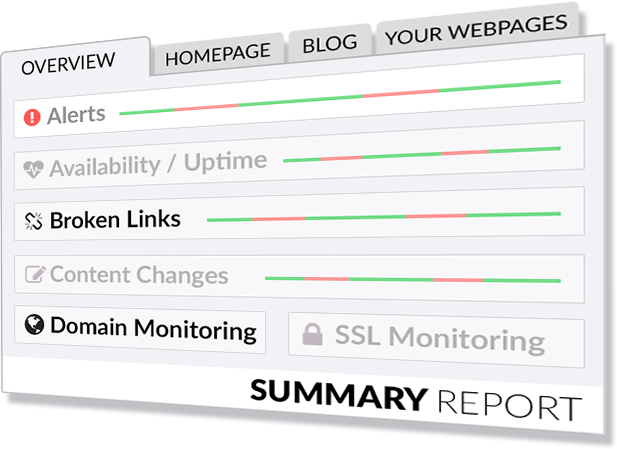 View your summary report